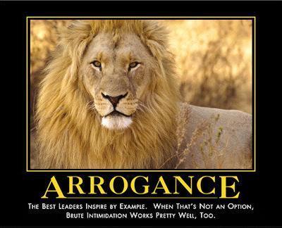 -arrogance-12921