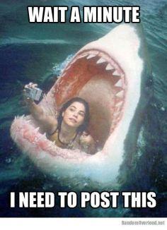 5e32a19383f3509141f6021608213411--funny-girl-memes-its-funny