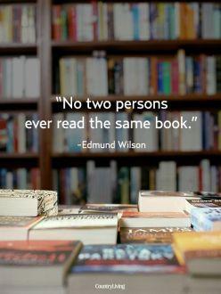 598f6f23eae1588b9b56232ae58cfa58--literature-quotes-teaching-literature